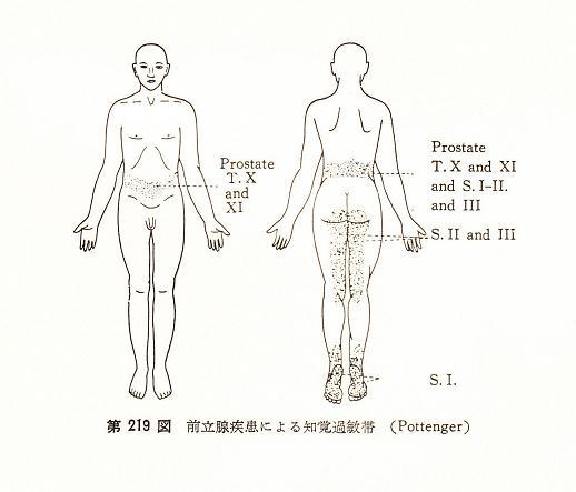 名古屋市緑区 慢性前立腺炎の専...