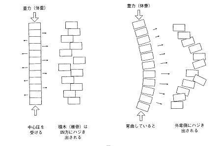 image-hajikidai